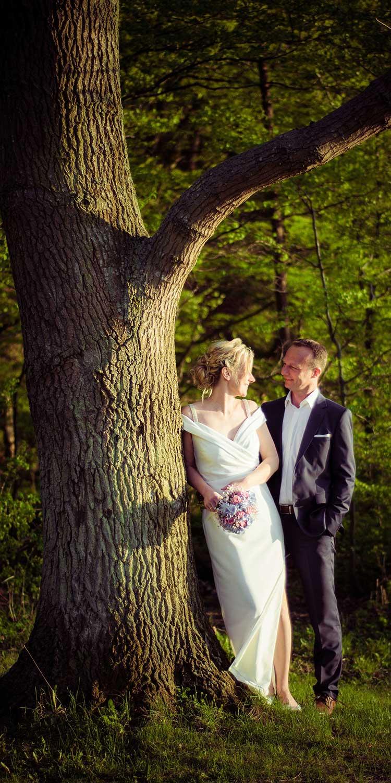 Hochzeitsfoto Wald Baum Sonnenuntergang Usedom