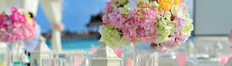 Florist Blumenladen Insel Usedom